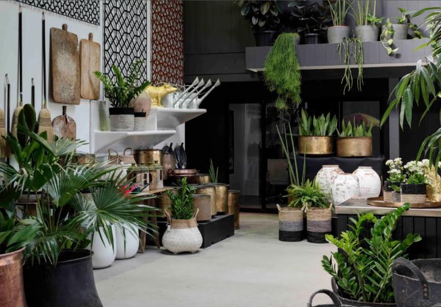 garden life plant sale broadsheet - Garden Life