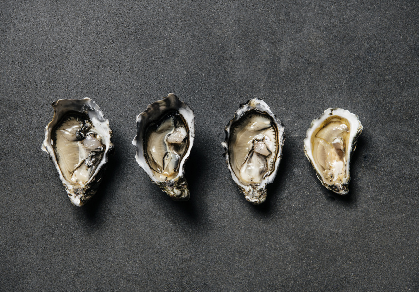 Oysters left to right: Smokey Bay, Bruny Island, Coffin Bay, Sydney Rock