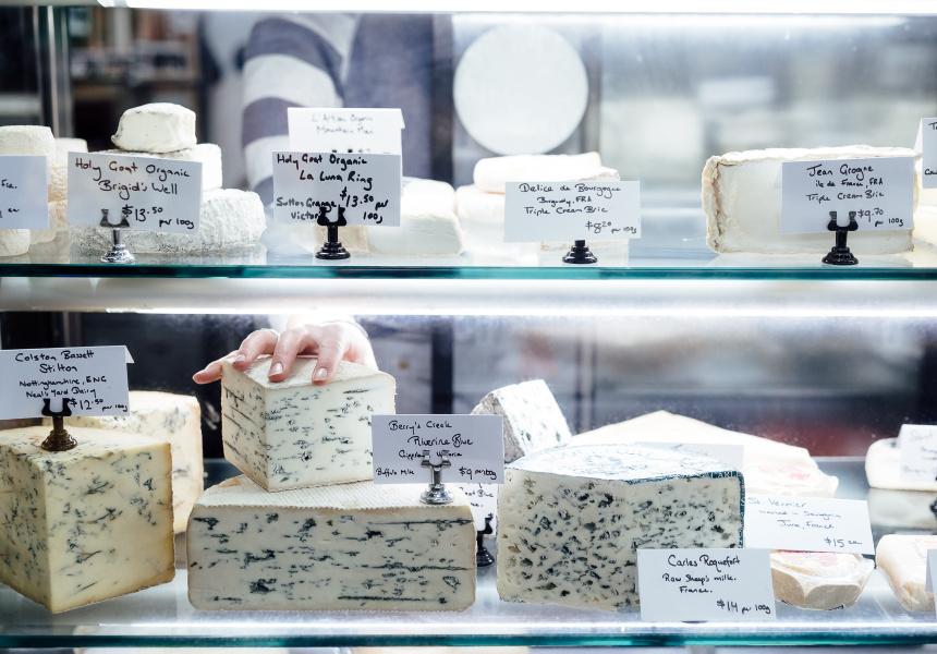 Maker & Monger, Say Cheese Festival 2018 at Prahran Market