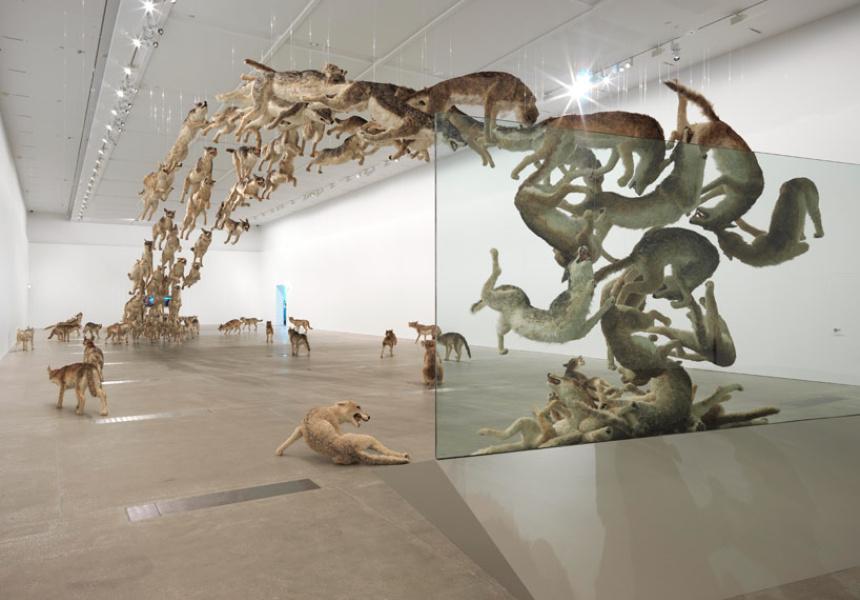 Cai Guo-Qiong, Head On, 2006, GOMA
