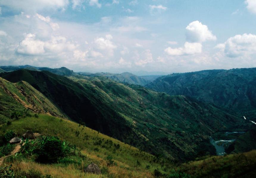 The jungle of the Democratic Republic of Congo
