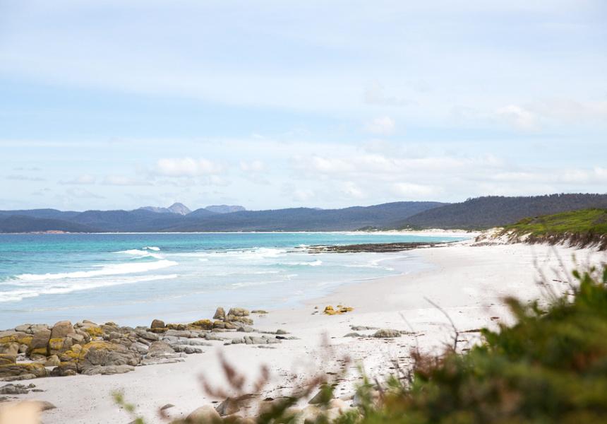 Friendly Beaches