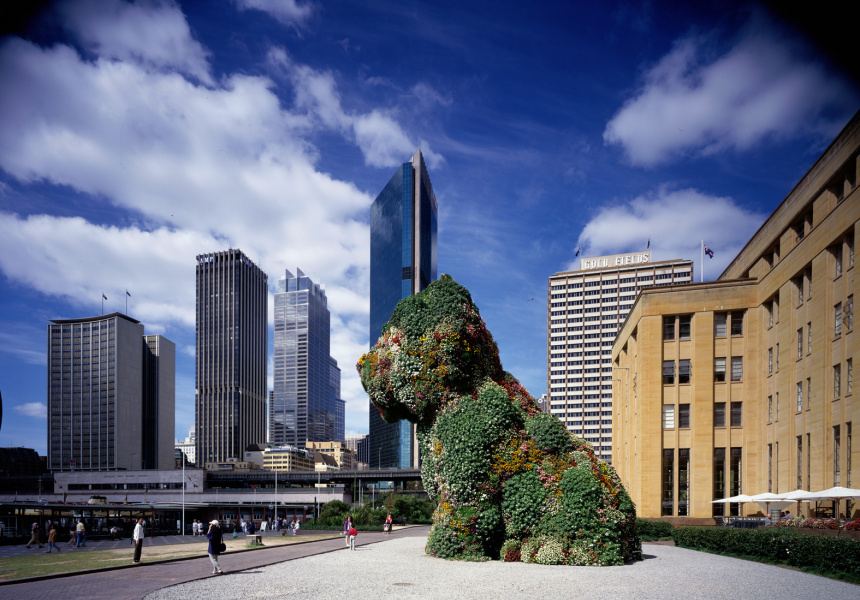 """Kaldor Public Art Project 10: Jeff Koons """"Puppy"""", Museum of Contemporary Art forecourt, Sydney, 12 December 1995 – 17 March 1996 © Jeff Koons. Photography: Eric Sierins"""