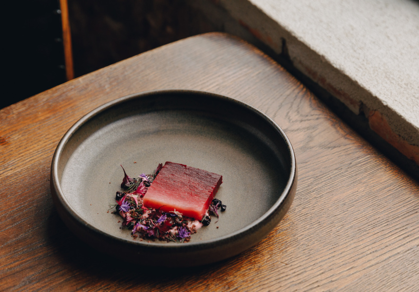 Heirloom beetroot, red onion, olive and salted elderberry