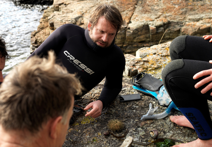 The Noma Australia team seaweed diving in Tasmania