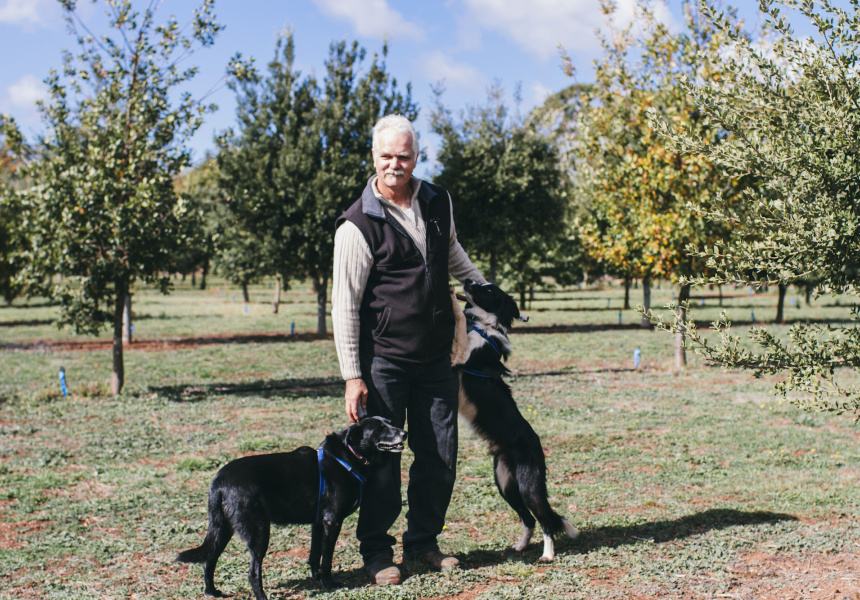Portrait of Andres Haas and his truffle hunting team