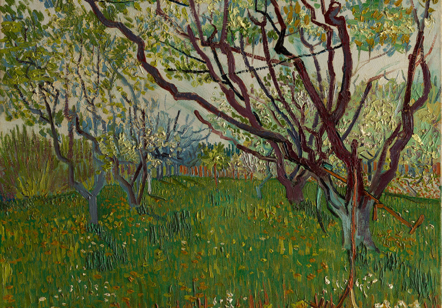 Vincent van Gogh / The Flowering Orchard 1888