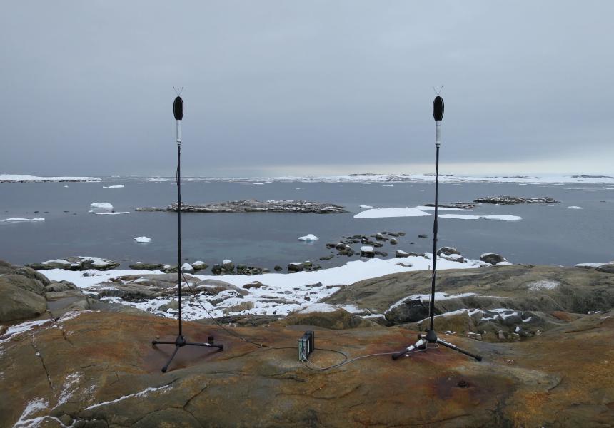 Sound recording, Antarctica
