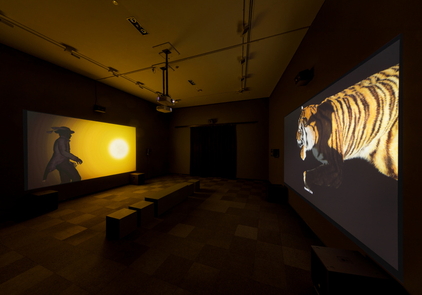 Ho Tzu Nyen, 2 or 3 tigers 2015, installation view, Australian Centre for Contemporary Art, Melbourne 2021. Courtesy the artist and Edouard Malingue Gallery, Hong Kong.