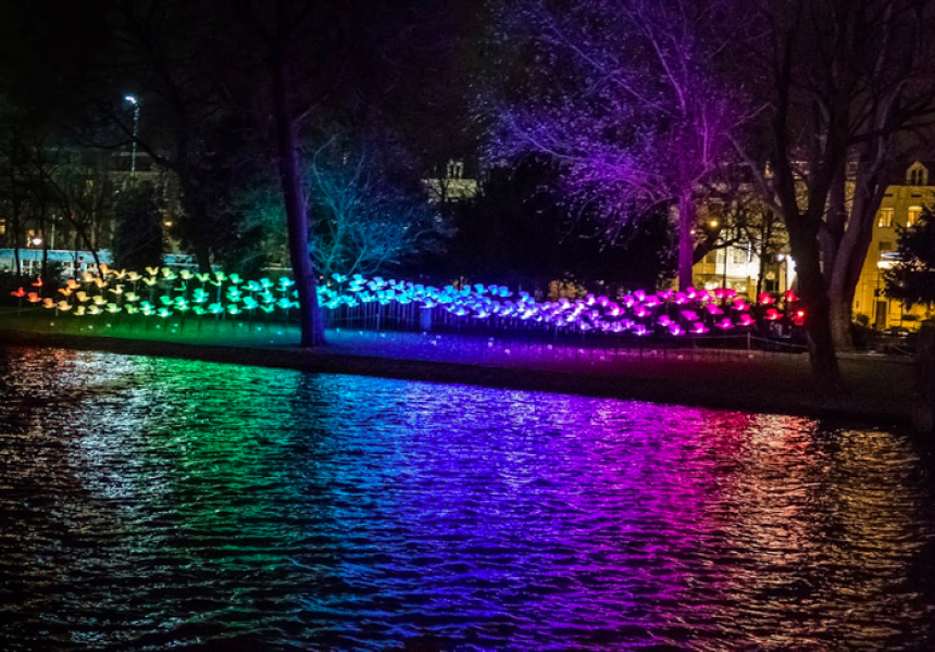 Enlightone: A Guide To Canberra's Enlighten Festival This Weekend