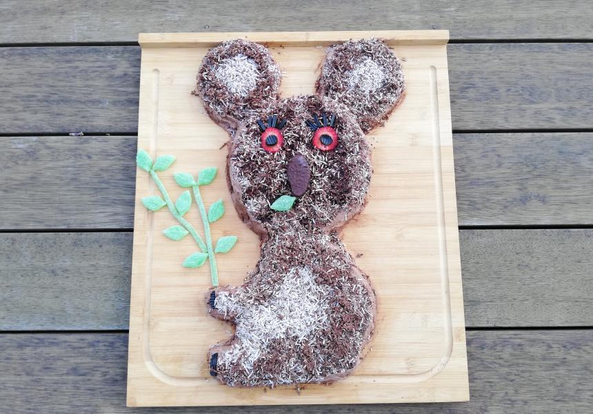 Elissa Goldstein's Koala