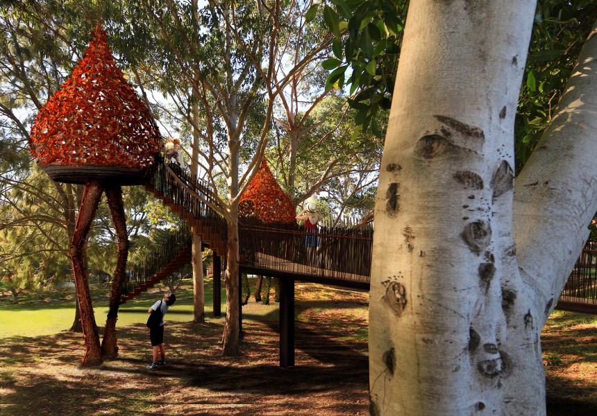 Eveleigh Tree Houses