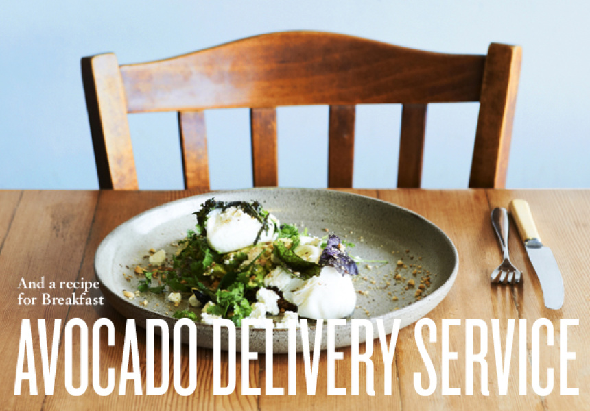 Avocado delivery service and a recipe for breakfast broadsheet avocado delivery service and a recipe for breakfast forumfinder Images