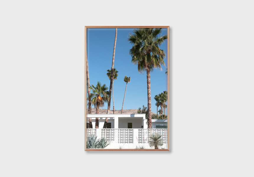 Palm Springs #1, 2019, Josie Withers