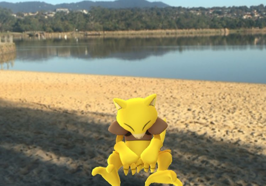 An Abra catching a snooze at Lillydale Lake. Via @pix.by.sarah