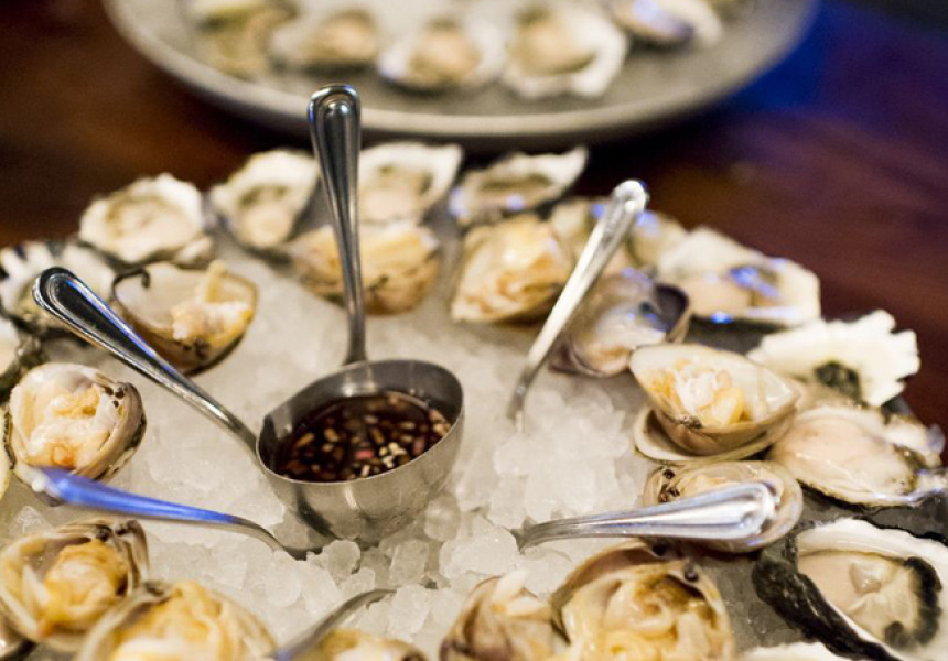 Oysters at The Morrison