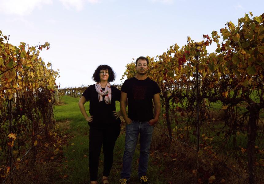 Yoko Luscher-Mostert & Andries Mostert, Brave New Wine
