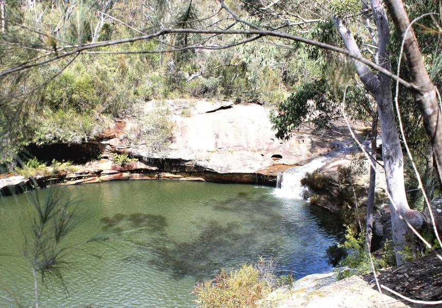 Minerva Pool