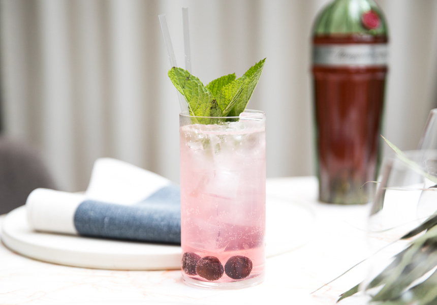 Sour Cherry Collins, Lume