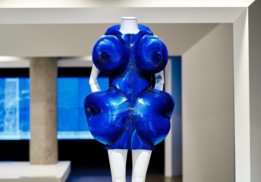 Iris Van Herpen's  Dress