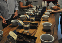 Coffee Cupping (Slide Show)
