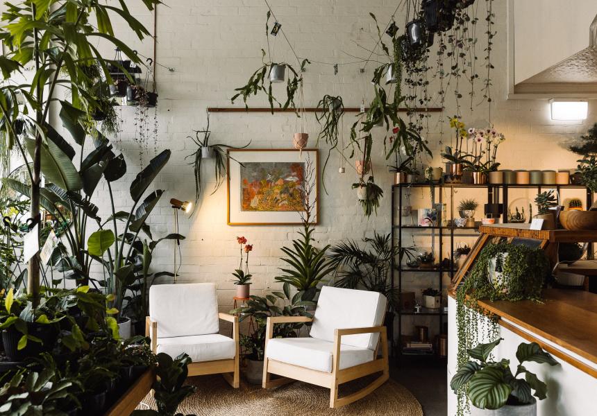 A New Preston Plant Store Run