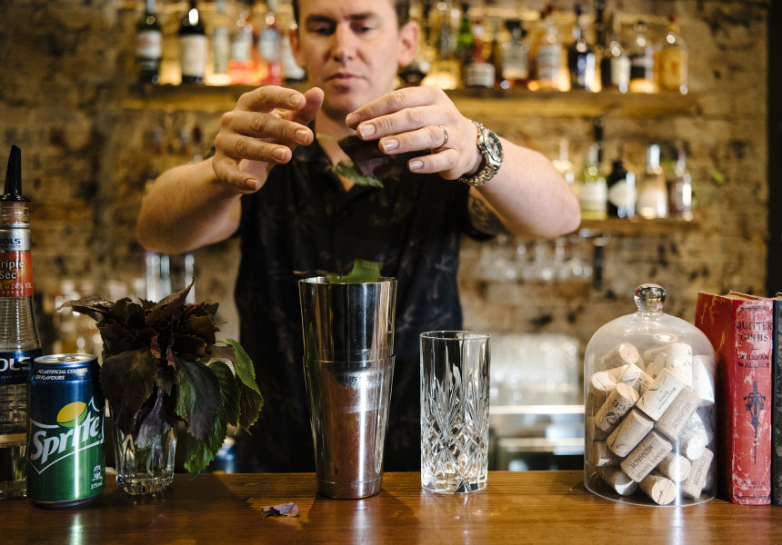 Tear up five of your six shiso leaves and stick them in a shaker