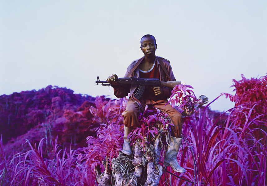 Higher Ground, Richard Mosse (2012)