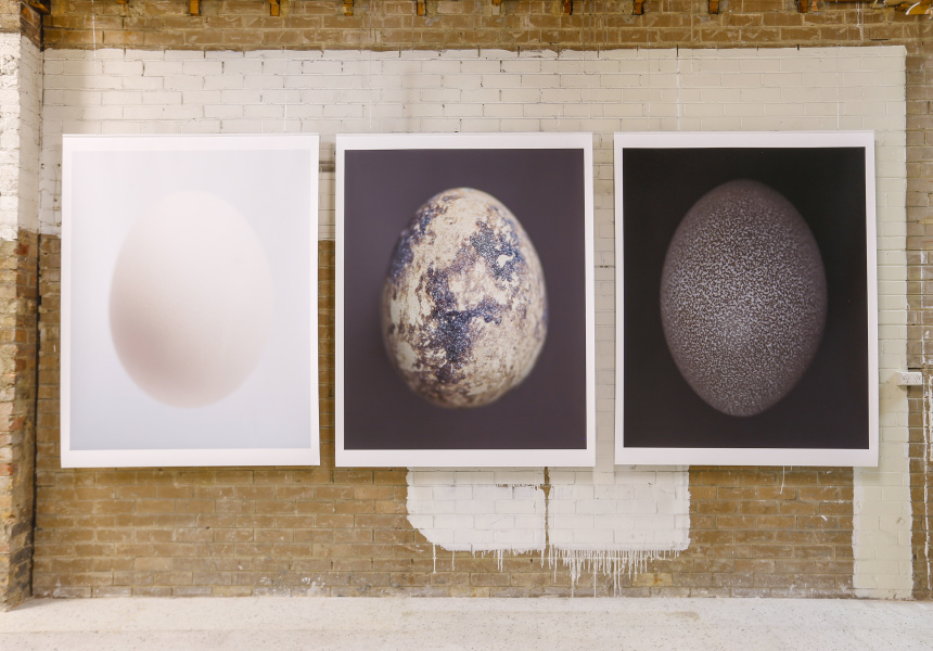 Installation view of Ovoid presented by Nick Horan for the National Gallery of Victoria's Melbourne Design Week 2017 at Watchmaker, Collingwood.