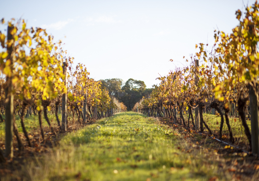 how to get to margaret river from melbourne